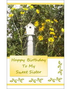 Birthday Card to my Sweet Sister