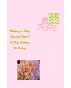 Birthday Card for Special Friend 2