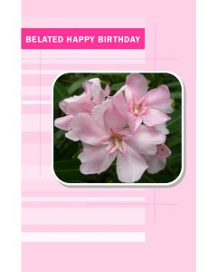Belated Birthday Card for Her