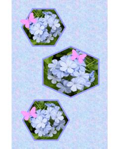 Oversized Notecard Butterfly and Plumbago