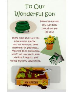 To a Wonderful Son