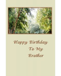 Happy Birthday to My Brother